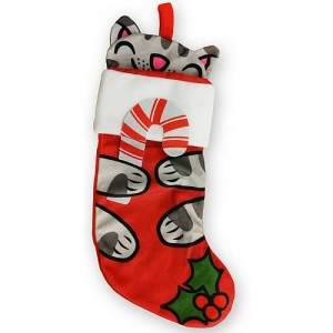 Big Bang Theory Soft Kitty Stocking