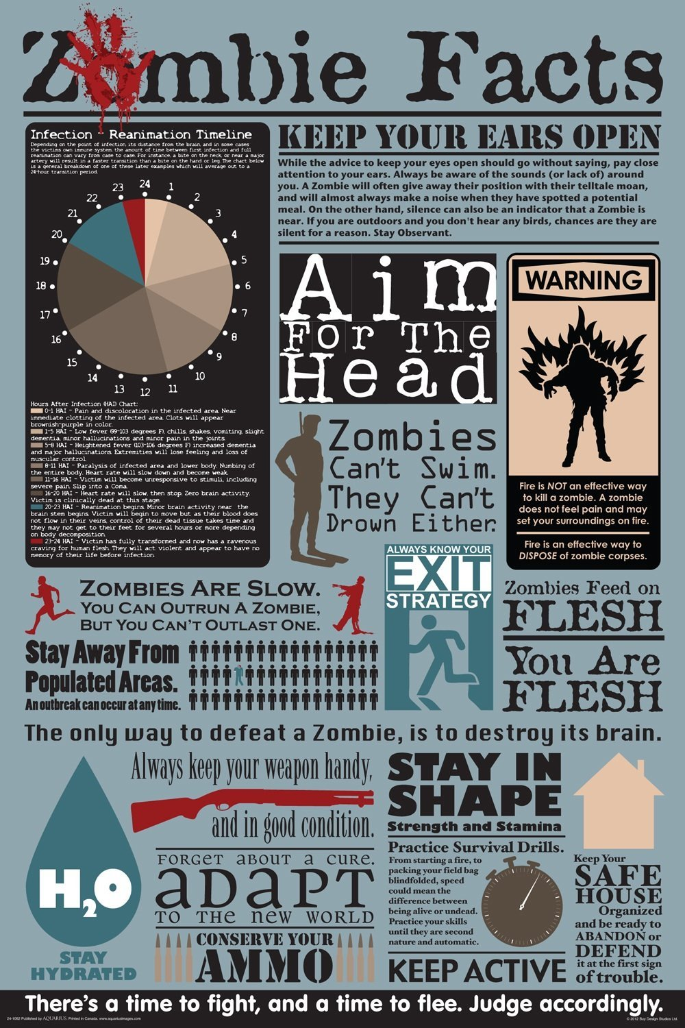 Zombie Facts Poster - Gift Search